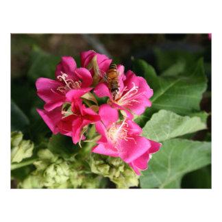 bee in pink multiple flowers customized letterhead