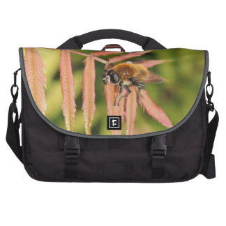 Bee in spring commuter bag