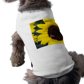 Bee in Sunflower Dog Jumper Dog Clothing