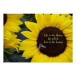 Bee in Sunflower Poster Love is the Honey