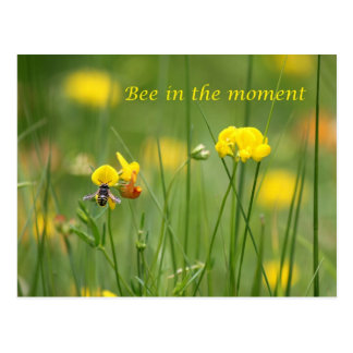 Bee in the moment postcard