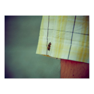 "Bee 6.5"" X 8.75"" Invitation Card"
