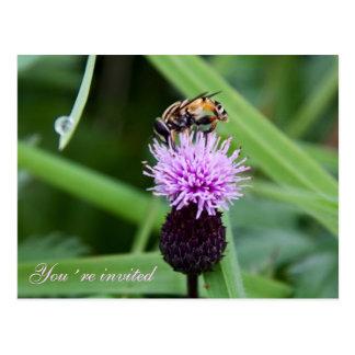 Bee invitation postcard