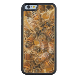Bee keeping at Arlo's Honey Farm Carved Maple iPhone 6 Bumper Case