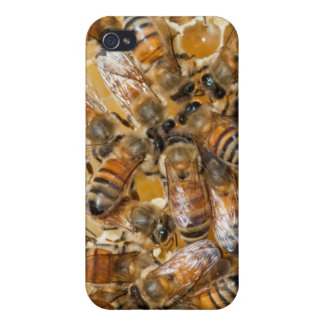 Bee keeping at Arlo's Honey Farm iPhone 4 Cover