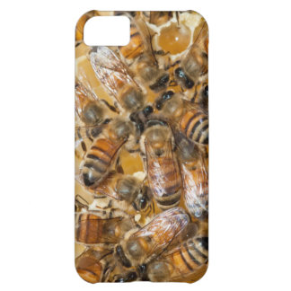 Bee keeping at Arlo's Honey Farm iPhone 5C Case