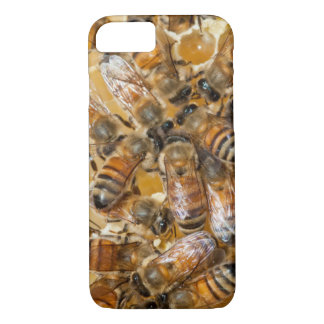 Bee keeping at Arlo's Honey Farm iPhone 8/7 Case