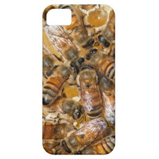 Bee keeping at Arlo's Honey Farm iPhone SE/5/5s Case