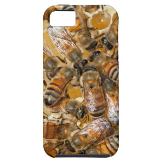 Bee keeping at Arlo's Honey Farm iPhone SE/5/5s Case