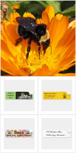Bee Keeping Bumper Stickers