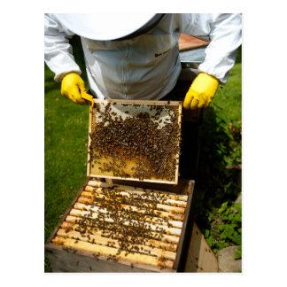 Bee Keeping Postcard