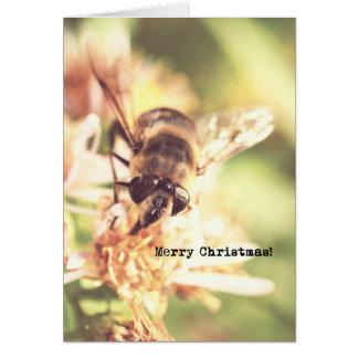 Bee Merry Christmas Vintage Look Photo Card