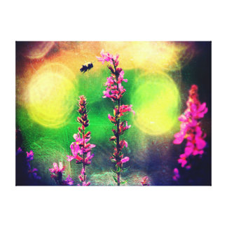 Bee N Pink Wildflowers In The Spotlight Stretched Canvas Prints