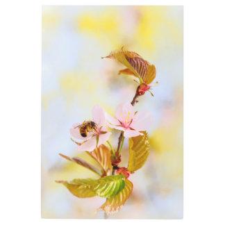 Bee On A Cherry Flower Metal Print