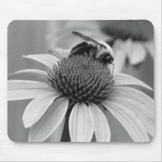 Bee on a Coneflower Mouse Pad