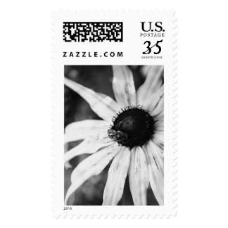 Bee on a Daisy (Black and White Postmark) Postage