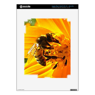Bee on a Flower iPad 3 Skins