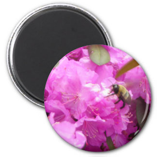 Bee on a Flower Magnet