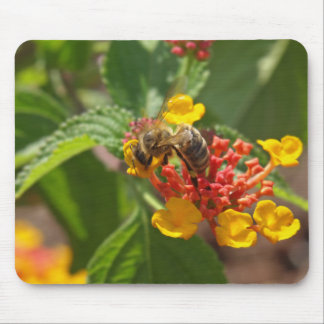 Bee on a lantana flower mouse pad