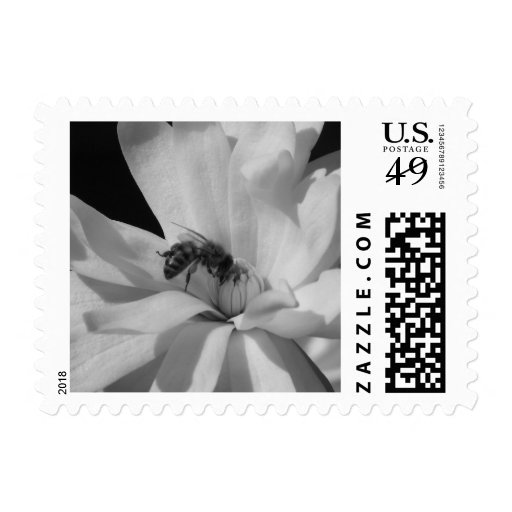 Bee on a Magnolia Centennial 3 Postage Stamp