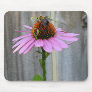 Bee on a Purple Coneflower Mouse Pad