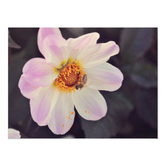 Bee on a purple flower personalized invite