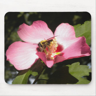 Bee on a Rose of Sharon 2 mousepad