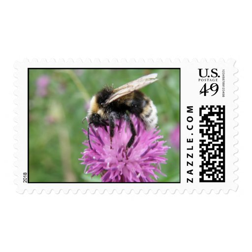 Bee on a thistle US Postage Stamp
