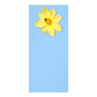 Bee on a yellow flower rack card