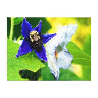 Bee on air potato flower canvas print