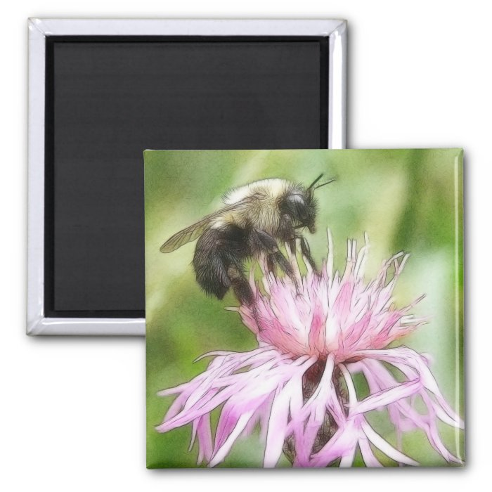 Bee On Bachelor Button 2 Inch Square Magnet