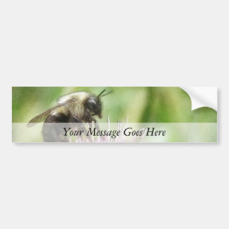 Bee On Bachelor Button Bumper Sticker