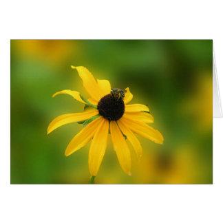 Bee On Black Eyed Suzy Greeting card