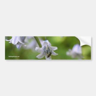 Bee On Bluebell Flower Photo Bumper Sticker