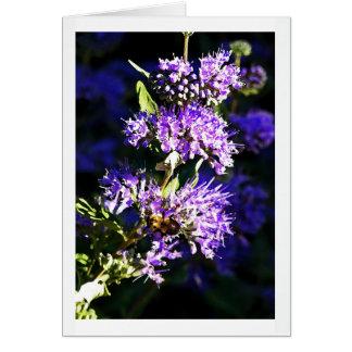 Bee on Butterfly Bush - Lavender Flowers Card