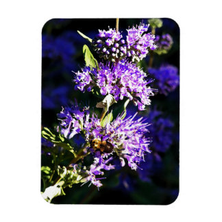 Bee on Butterfly Bush - Lavender Flowers Magnet