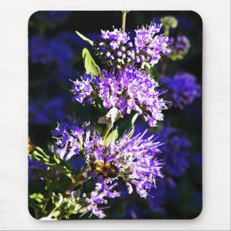 Bee on Butterfly Bush - Lavender Flowers Mouse Pad