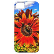 Bee on Colorful Sunflower iPhone 5 Case