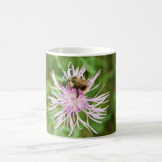 Bee on Flower Blossom Classic White Coffee Mug