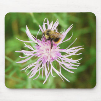 Bee on Flower Blossom Mouse Pad
