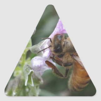 Bee on Flower Triangle Sticker