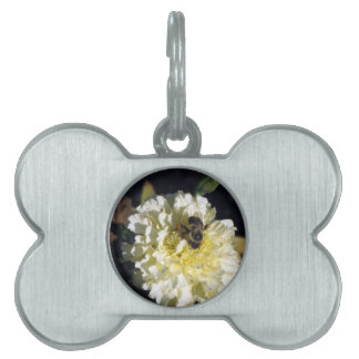 Bee on Ghost Marigold Pet Name Tag