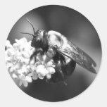 Bee on Lavender Classic Round Sticker