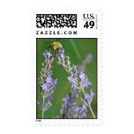 bee on lavender postage stamp