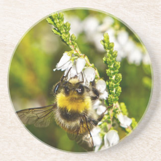 Bee on Lucky White Heather Drink Coaster