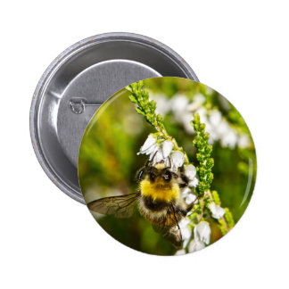Bee on Lucky White Heather Pinback Button