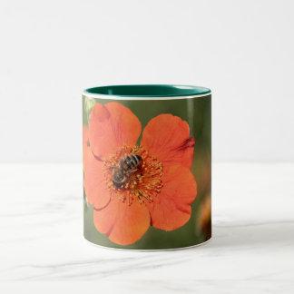 Bee on Orange Potentilla Two-Tone Coffee Mug