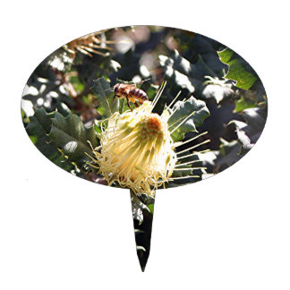 Bee on pale yellow Australian dryandra flower Cake Topper