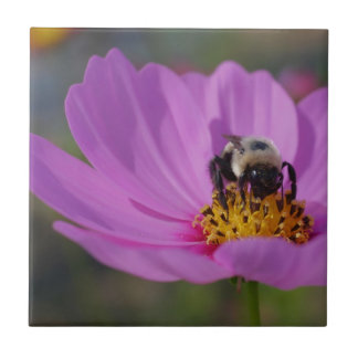 Bee On Pink Cosmos Flower Nature Ceramic Tile