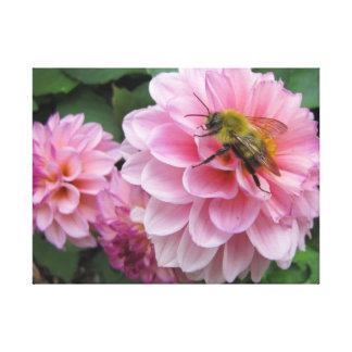 Bee on Pink Dahlia Flower Canvas Print